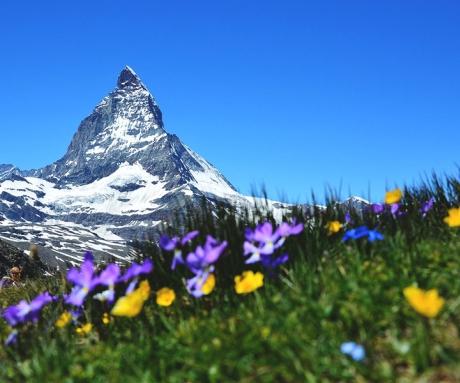 Французская Швейцария